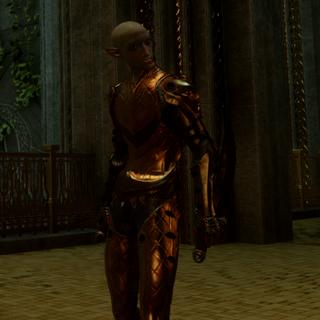 Sentinel Shadow