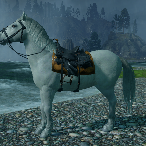 Imperial Warmblood mount