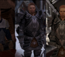 Codex entry: Alistair (Dragon Age II)