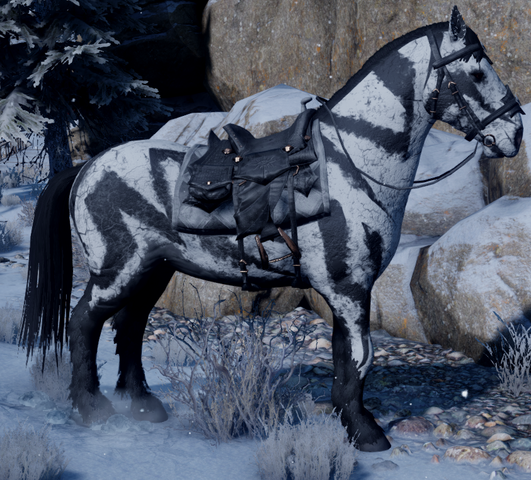 File:Frostback Mountain Horse.png