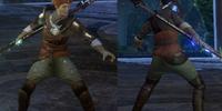 Necromancer's Inquisition Warmage Robes