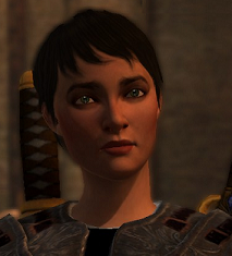 File:Sparrow-Hawke.png