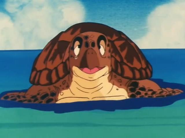 File:Turtle saying bye to goku.jpg