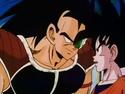 Goku and Radidz