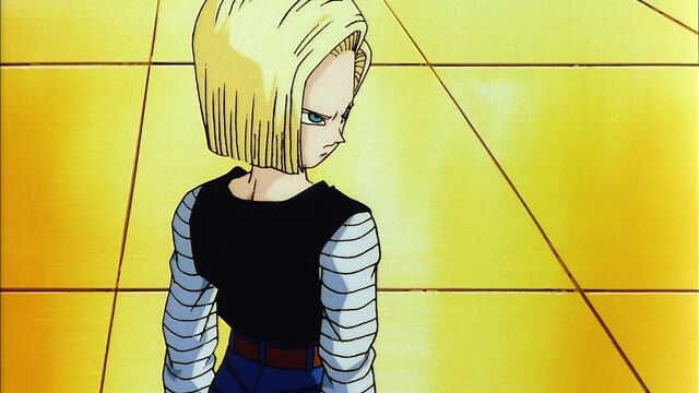 File:Android 18 6543.JPG