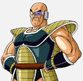 Nappa (BoG website art)
