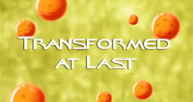 File:Transformed at Last.jpg