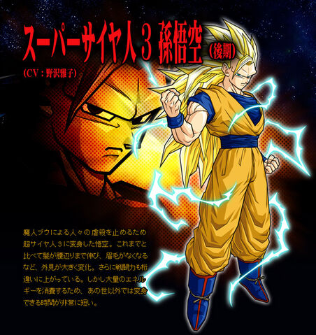 File:Goku (End) SS3 BT3.jpg