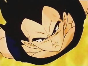 File:DBZ - 252 - Ready To Fuse-(033267)13-32-39-.JPG
