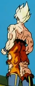 File:The Mysterious Youth - Goku.PNG