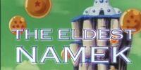 The Eldest Namek