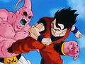Dbz248(for dbzf.ten.lt) 20120503-18305273