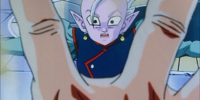 Goku & Kai Standoff