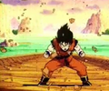 GokupowerupPIONEER0021