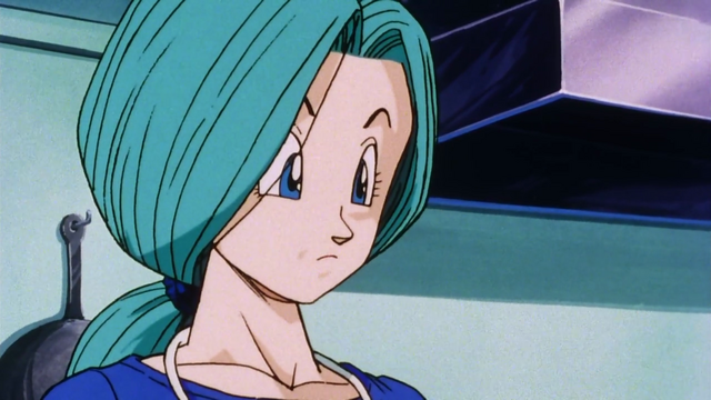 File:FutureBulma.png