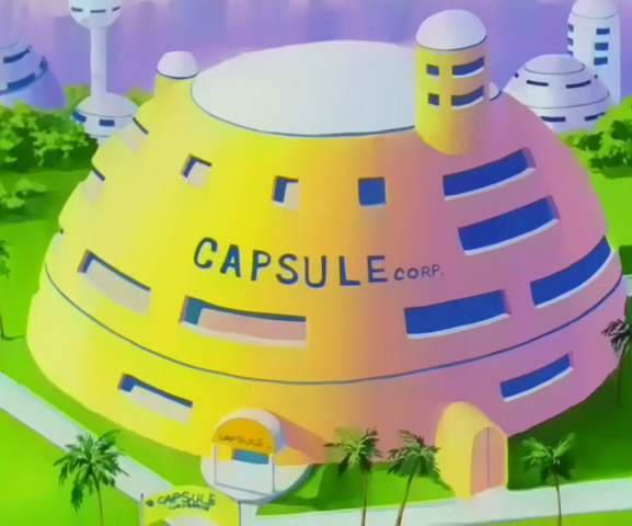 File:CapsuleCorporationTakeFlightVidel.png