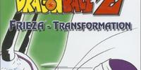 Transformation (volume)