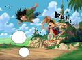 Goku&Luffy(CE)