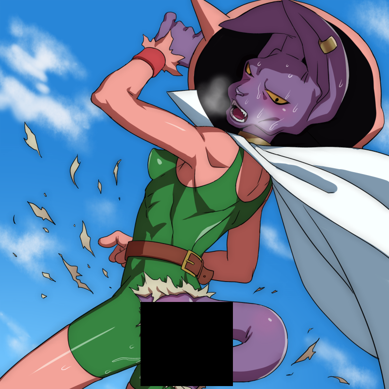 The Adventures Of Beerus And Whis In Space Dragonball