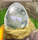 Zombie Dragon Egg