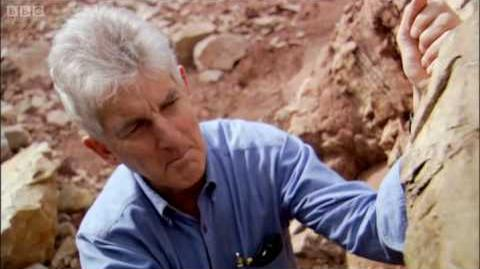Earth's rarest and ancient fossils - BBC