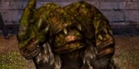 Zartin Bristleback Dragon