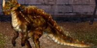 Arid Spikehorn Dragon