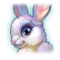 BunnyDragonProfile