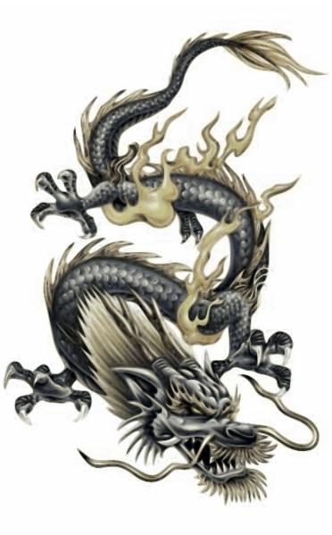 Lung dragonology dragons fandom powered by wikia - Dessin dragon japonais ...