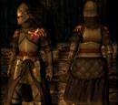 Set of Royal Guard Armor