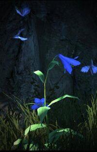 Mariposas igualmente brillantes revolotean junto a los pétalos de estas flores.