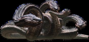 Hydra01