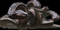 Hidra