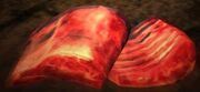 Dragon's Dogma - Beast Steak.jpg