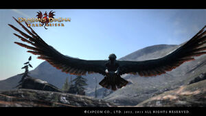 Dragon's Dogma Dark Arisen Screenshot Harpy