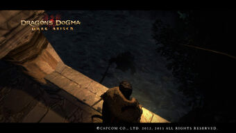 Dragon's Dogma Dark Arisen Screenshot 5-0