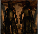 Oblivion Armor Set