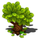 Small Tree.png