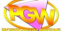 Pro Gay Wrestling