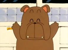 Poop dog