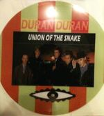 Union of the snake song wikipedia picture disc bootle duran duran