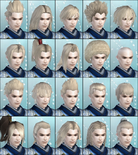 DW6E Male Hair Parts