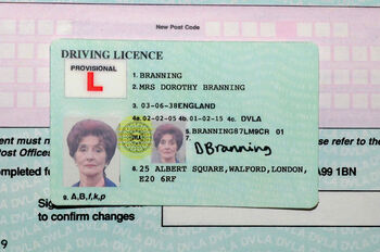 Dot Branning Driving Licence
