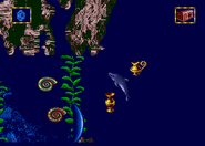 Treasure caves treasure 3