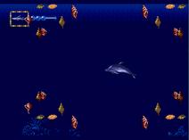 Shark sea 3
