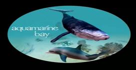 Aquabay screen