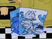 Eds on ice
