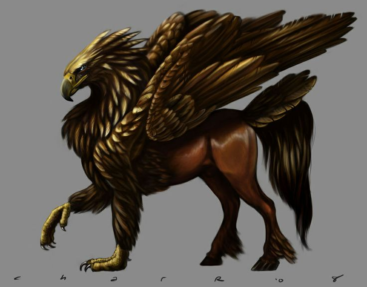 Hipogrifo wiki el bestiario fandom powered by wikia - A picture of a griffin the creature ...