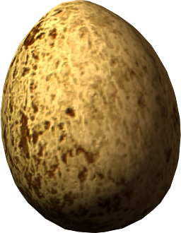 File:Hawk egg.png