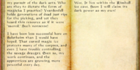 Rogue Necromancer's Journal